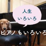 ピアニストの悩みは「自分の楽器を持ち歩けない」こと?本番のピアノに対応したい!