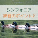 バッハのシンフォニア譜読み・練習ポイント解説